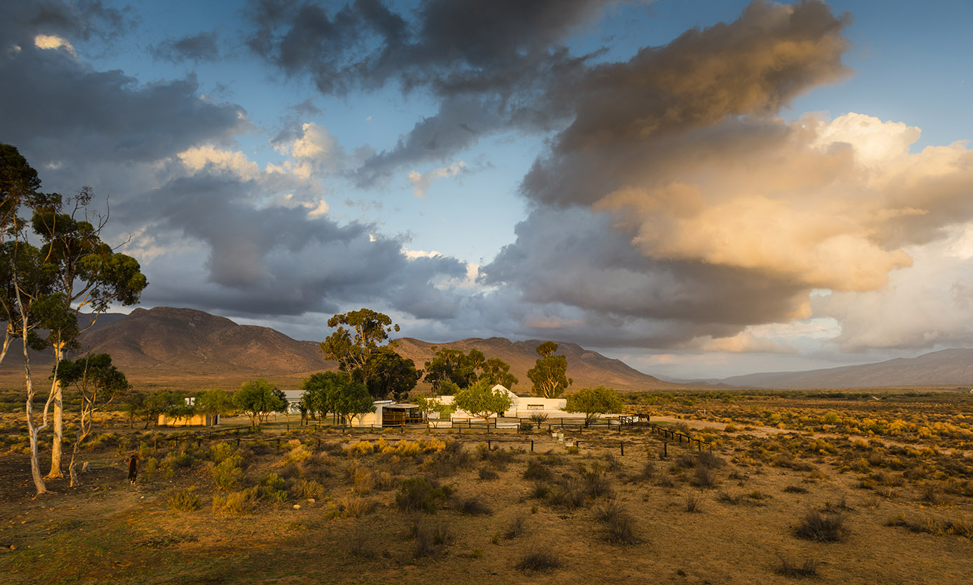Western Cape Nature Photography