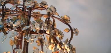 Pezula Resort Knysna Garden Route - create photography