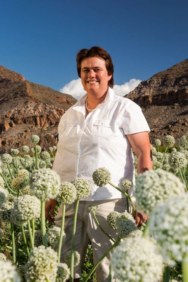 Karoo onion farmer