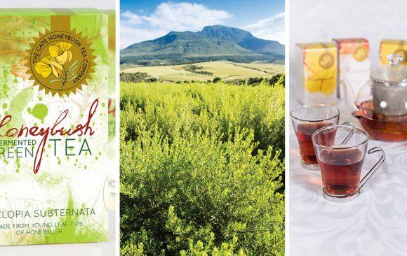 Cape Honeybush Tea