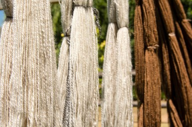South African wool farming